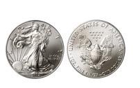 Amercian Eagle Silver Coin